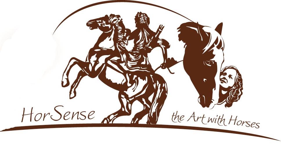HorSense - the art with horses